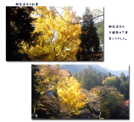 御岳渓谷へ_c0051105_23424439.jpg