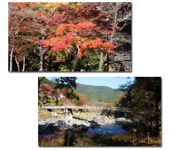 御岳渓谷へ_c0051105_23492368.jpg