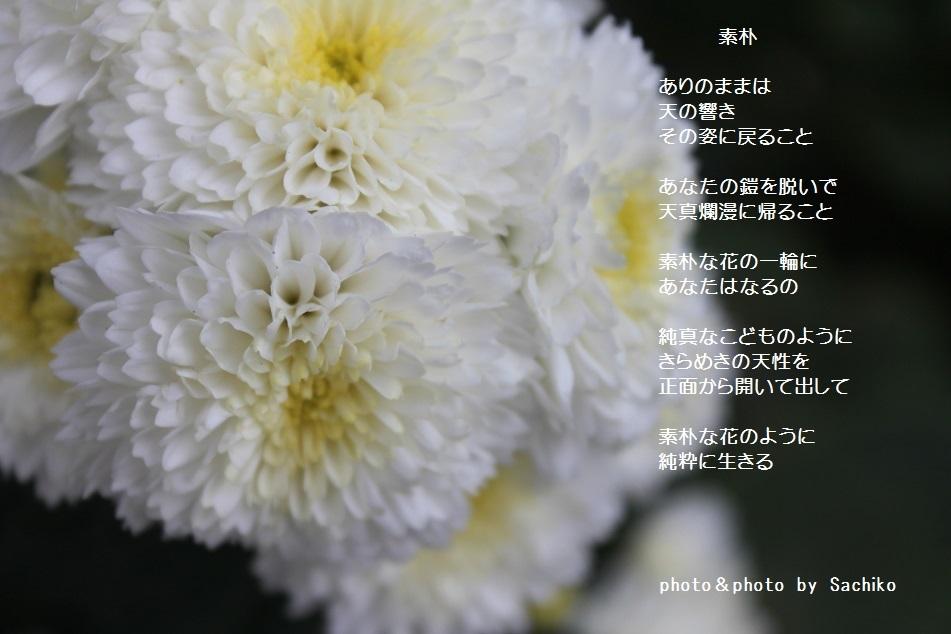 f0351844_08523763.jpg