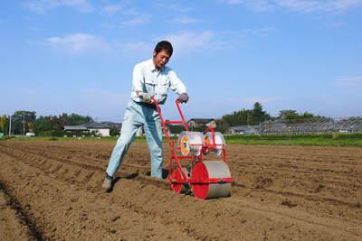 有機栽培の水田ごぼう ごぼうの種まき その1_a0254656_1719493.jpg