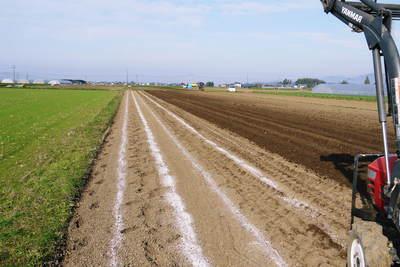 有機栽培の水田ごぼう ごぼうの種まき その1_a0254656_17431212.jpg