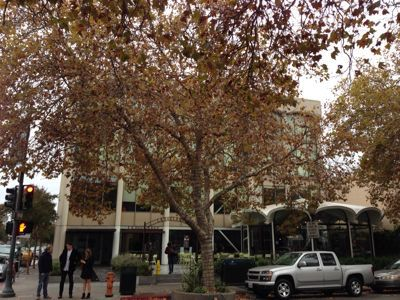 Palo Altoからサンフランシスコ Swan Oyster Depot! Albonaディナー!_f0355367_6591372.jpg