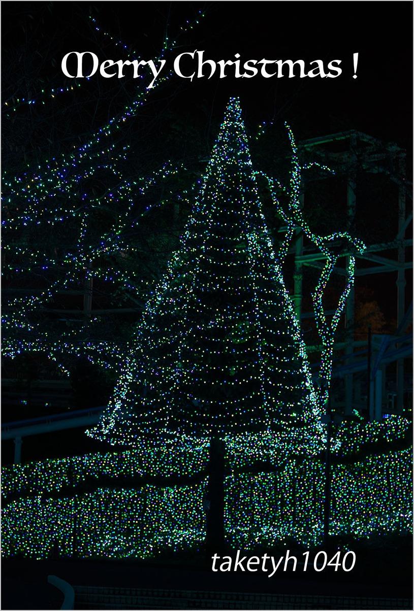 メリー・クリスマス_a0261169_1558182.jpg