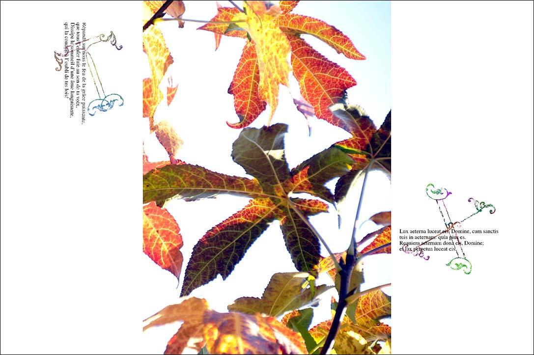 f0198771_23502020.jpg