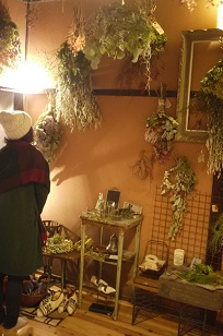 ①「フボーと植物展 白3」開催中!_f0226293_8123637.jpg