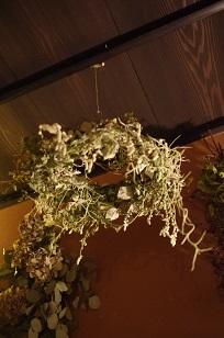 ②追加入荷しました「フボーと植物展 白3」_f0226293_857629.jpg