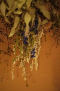 ②追加入荷しました「フボーと植物展 白3」_f0226293_8582191.jpg