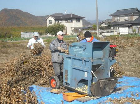 大豆の収穫_c0081499_17383128.jpg