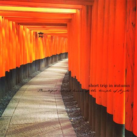秋の古都へ、小さな旅。【京都ところどころ2】_d0174704_1029258.jpg
