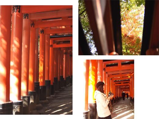 秋の古都へ、小さな旅。【京都ところどころ2】_d0174704_1182465.jpg