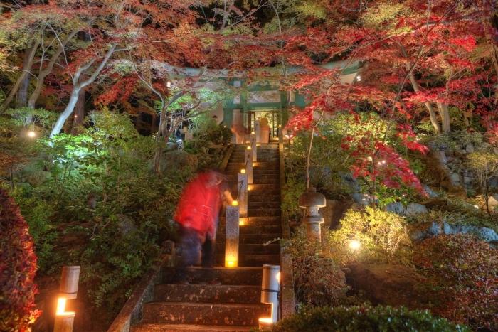 Fall of prime  ・・・燈花会・・・_f0333031_08254807.jpg