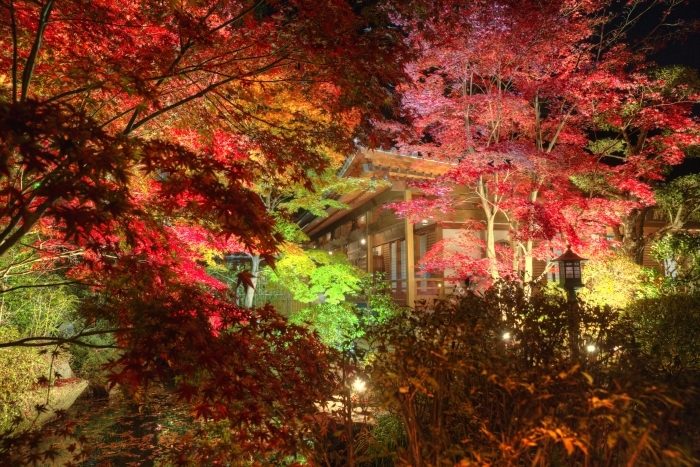 Fall of prime  ・・・燈花会・・・_f0333031_08260742.jpg
