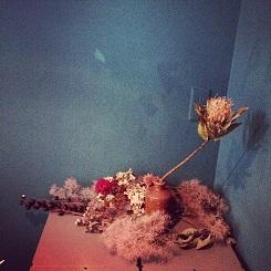 冬の植物。_b0072459_14135718.jpg