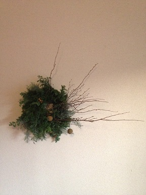 冬の植物。_b0072459_14141722.jpg