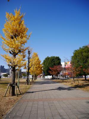 今日のお散歩_a0027275_22363790.jpg