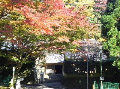紅葉も見頃です_e0234016_1942372.jpg