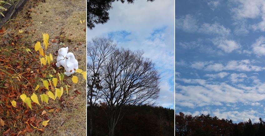 葉が散っていく_a0212730_20234437.jpg
