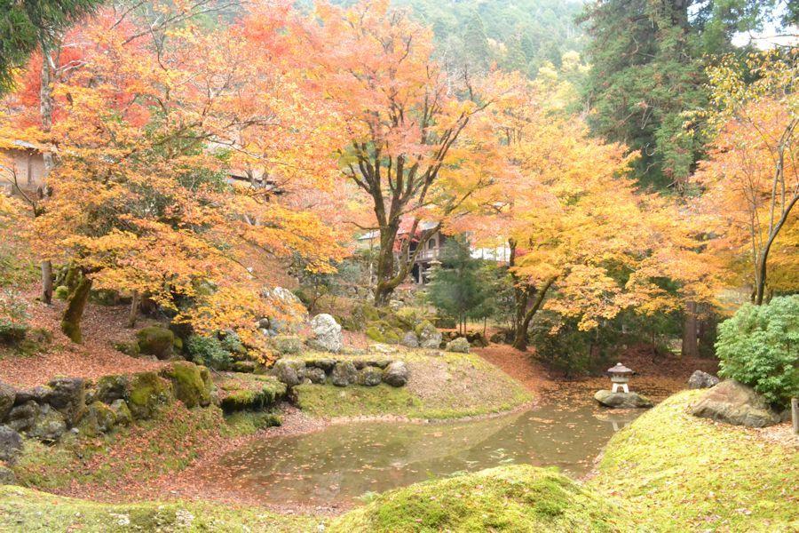 美山へ_d0086634_15413928.jpg