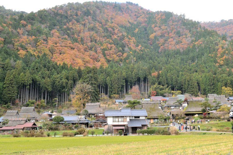 美山へ_d0086634_15422031.jpg
