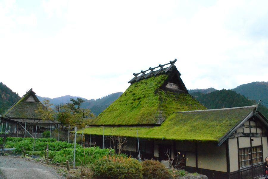 美山へ_d0086634_15423028.jpg