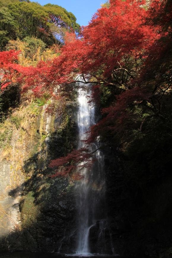 2014年11月24日 箕面大滝!_d0202264_1841593.jpg