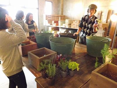 庭人さんの寄せ植えセミナー開催しました!_d0237564_1612984.jpg