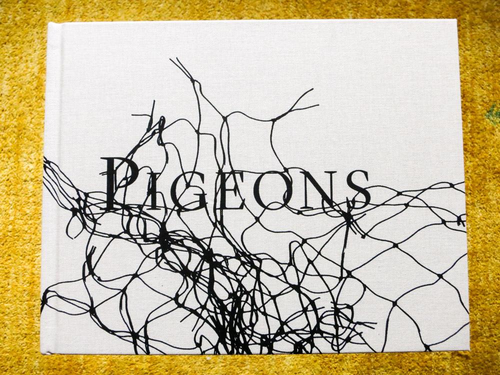 Stephen Gill 「Pigeons」_c0016177_10381954.jpg