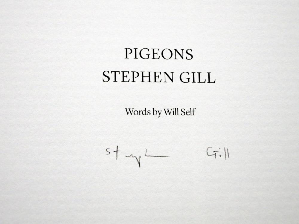 Stephen Gill 「Pigeons」_c0016177_10384265.jpg