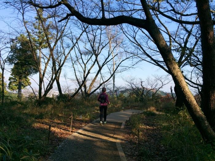 2014.11.23 笹尾根-高尾25Kスピードハイク_b0219778_10030028.jpg