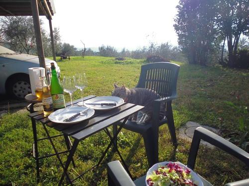 リラックスTIMEと美味しいお家BBQ@山の家!!_c0179785_1959375.jpg