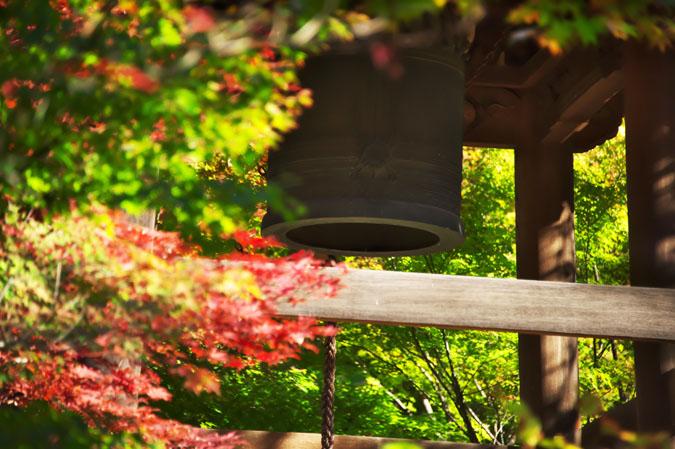 平林寺の紅葉1_a0263109_1445270.jpg