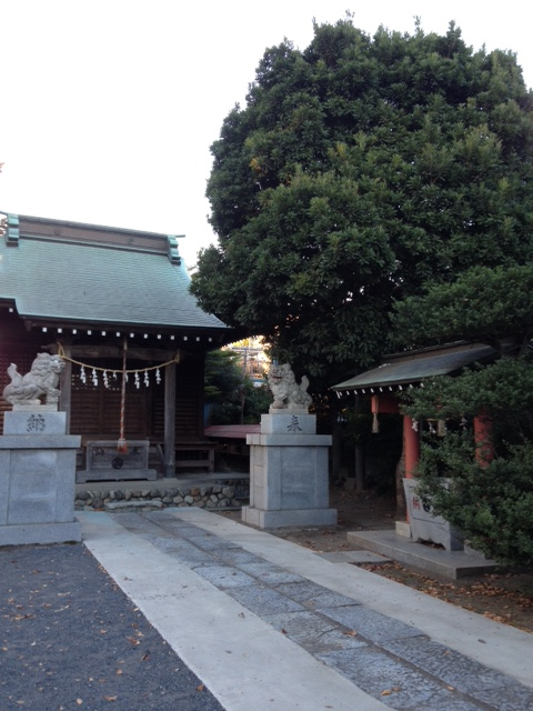 瀬織津姫神を訪ねて_a0258233_22571628.jpg