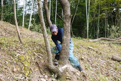 原木しいたけ 2年後の収穫へ向け、原木の伐採 その1_a0254656_1914799.jpg
