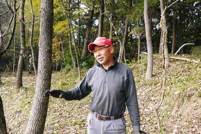 原木しいたけ 2年後の収穫へ向け、原木の伐採 その1_a0254656_19162822.jpg