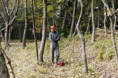 原木しいたけ 2年後の収穫へ向け、原木の伐採 その1_a0254656_1995074.jpg