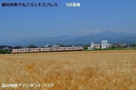 観光列車の冬_a0243562_14033778.jpg