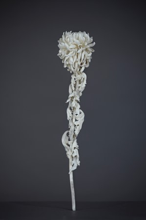 橋本雅也『一草一木』展 2014年12月2日~12月25日_d0208992_16384939.jpg