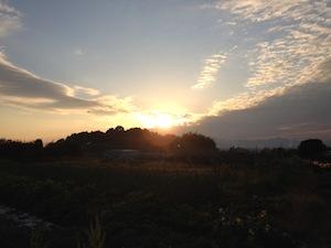 みかん  お日様  山辺の道_e0115301_0394747.jpg