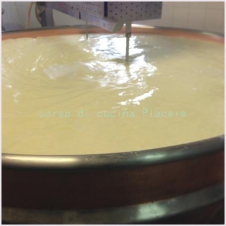 イタリア食旅行記⑬ 町のチーズ屋さん訪問_b0107003_11325128.jpg