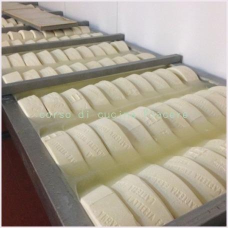 イタリア食旅行記⑬ 町のチーズ屋さん訪問_b0107003_11592660.jpg