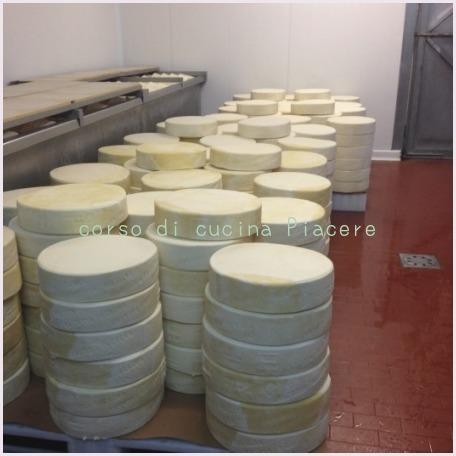 イタリア食旅行記⑬ 町のチーズ屋さん訪問_b0107003_12001067.jpg