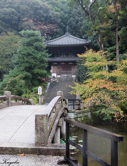 京都の宿_a0086828_4144935.jpg