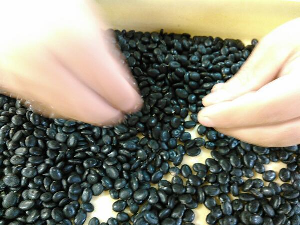 夕暮れのなか、黒平豆の選別が行われています。_b0206037_16323224.jpg