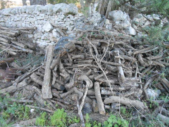 薪の季節です。_b0305039_0364658.jpg