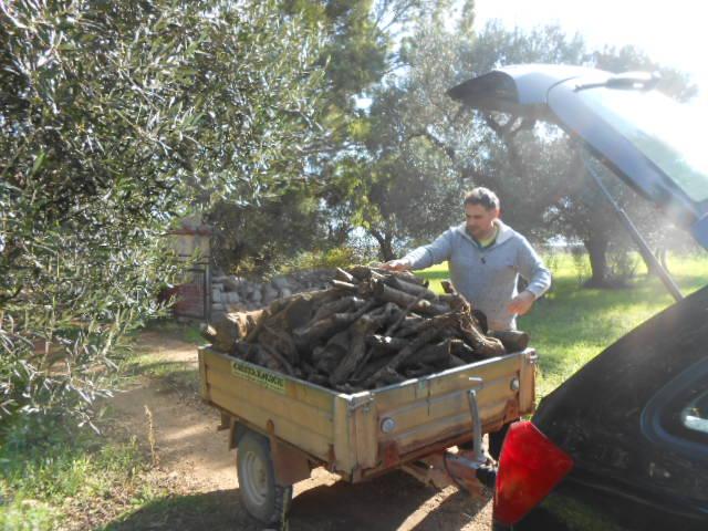 薪の季節です。_b0305039_0375261.jpg