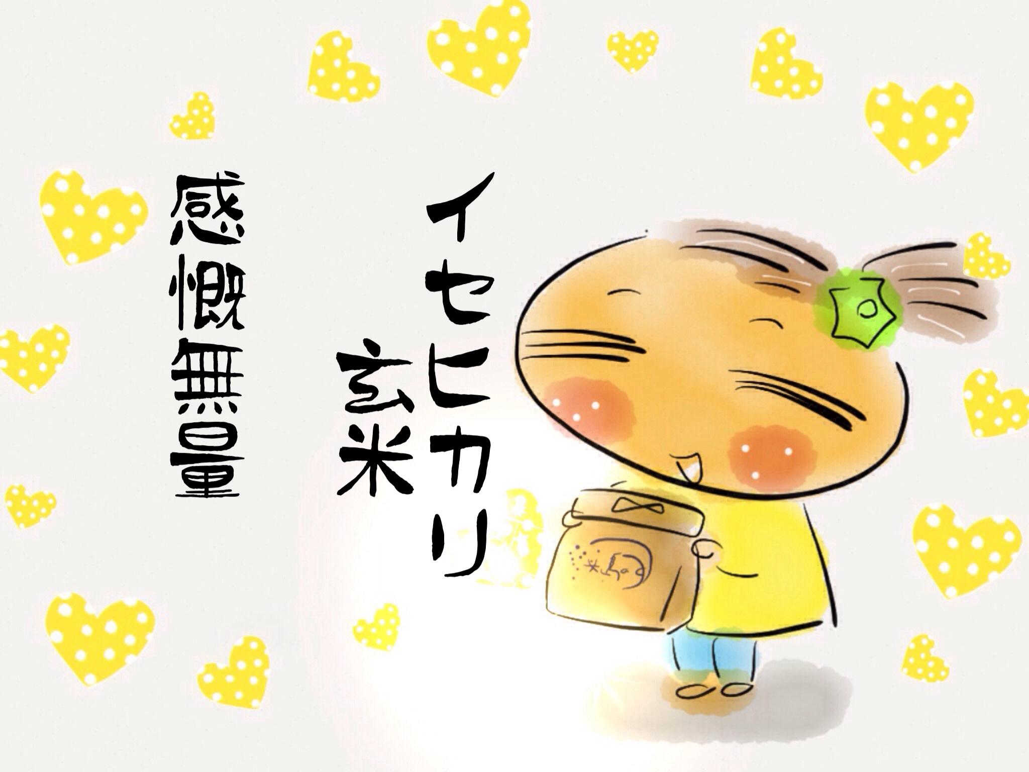 周防大島のイセヒカリ玄米☆_f0183846_17154374.jpg