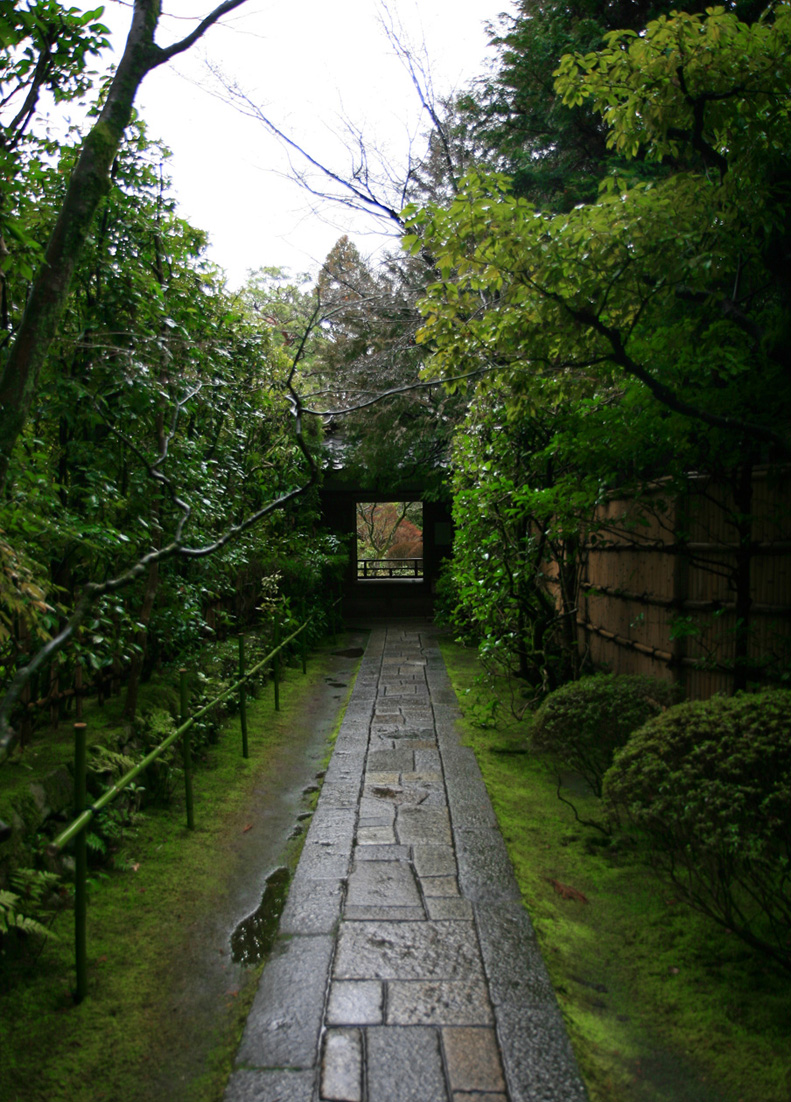 冬の京都 大徳寺 高桐院 楓と苔 _e0127948_1513337.jpg