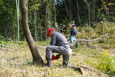 原木しいたけ 2年後の収穫へ向け、原木の伐採 その2_a0254656_18104915.jpg