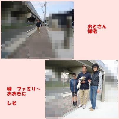 b0306158_15083646.jpg