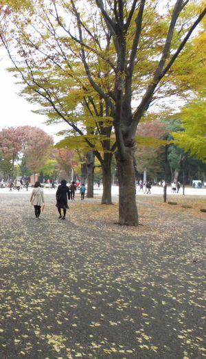 両親と東京へ_f0012059_192953.jpg